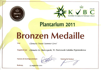 Bronze medal was awarded to 'Sweet Summer Love' of Flammula Group