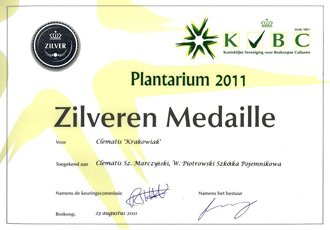 Silver medal was awarded to 'Krakowiak' of Viticella Group