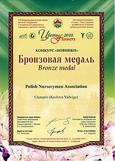 Clematis 'Królowa Jadwiga' was awarded the bronze medal