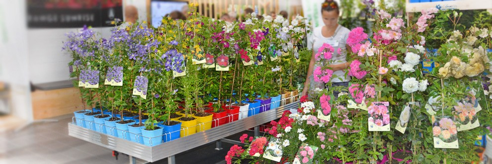 Green is Life  – 24th international plant and garden fair in Warsaw